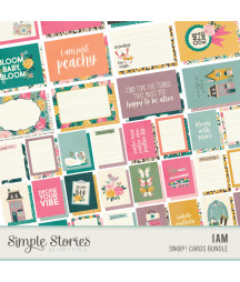 SIMPLE STORIES - I Am 2020 - SN@P! Cards