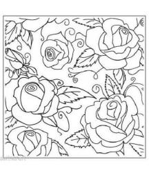EMBOSSING FOLDER - Roses