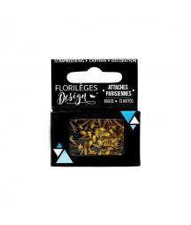 FLORILEGES - Mini attaches parisiennes Ambre